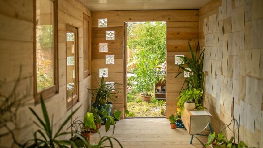 zavetišče za zavržene rastline-photo_cover